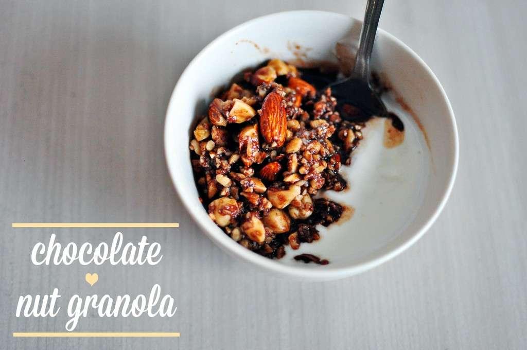 Chocolate Nut Granola